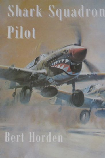 Shark Squadron Pilot, by Bert Holden